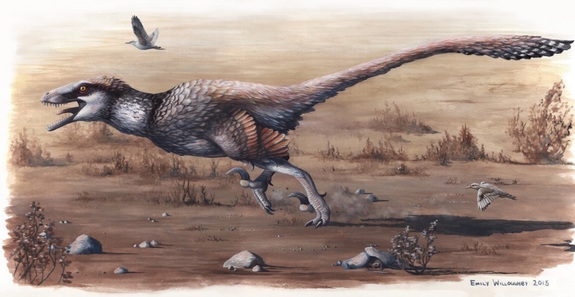An illustration of Dakotaraptor steini running with sparrow-size birds (Cimolopteryx petra) during the Late Cretaceous, about 66 million years ago. Credit: Emily Willoughby